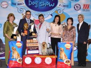 The Mall Championship Dog Show 3/2012(AB2)