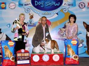 The Mall Championship Dog Show 3/2012(AB4)