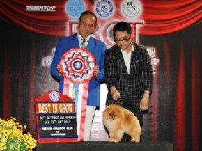 FBCT Championship Show 3/2012(AB1)