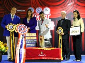 FBCT Championship Show 3/2012(AB2)