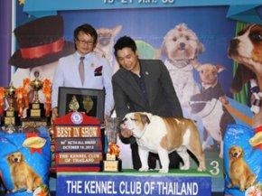 Bangkok Grand Dog Show 2012(AB1)