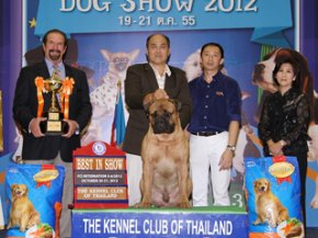 Bangkok Grand Dog Show 2012(AB2)