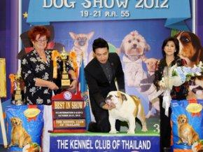 Bangkok Grand Dog Show 2012(AB3)