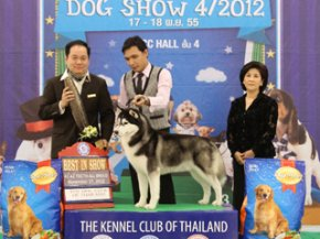 The Mall Championship Dog Show 4/2012(AB2)