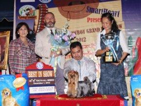 The Little Cowboy Grand Dog Show 2012(AB2)