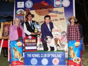 The Little Cowboy Grand Dog Show 2012(AB3)