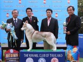 Thailand Grand Pet Show 2012