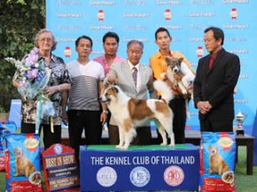 Thai Bangkaew Dog Specialty Championship Dog Show