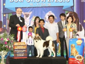 The Mall Toy Dog Championship Dog Show 2/2013(TBK)
