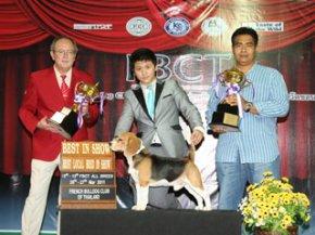 FBCT Championship Dog Show 1/2011(AB2)