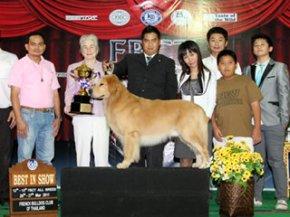 FBCT Championship Dog Show 1/2011(AB4)