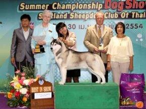 Summer Championship Dog Show 2011(AB2)