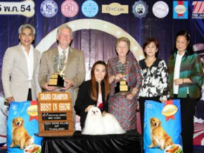 The Mall Toy Dog Championship Show 2/2011(AB2)