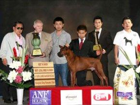 Th.Grand.Ch.Tawan Namfah Daeng-Pluang@Siam