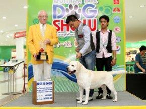 Ayutthaya Park Dog show 2011(AB2)
