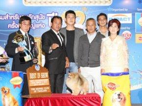 THAILAND INTERNATIONAL DOG SHOW 2011(AB3)