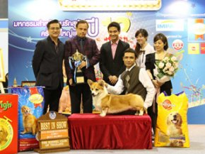 THAILAND INTERNATIONAL DOG SHOW 2011(AB4)
