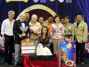 The Mall Toy Dog Championship Show 3/2011(AB2)