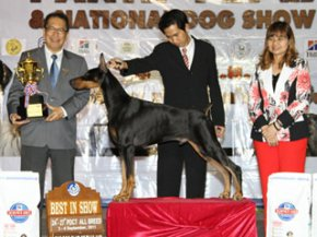 PANTIP PET EXPO & NATIONAL DOG SHOW 2011(AB2)