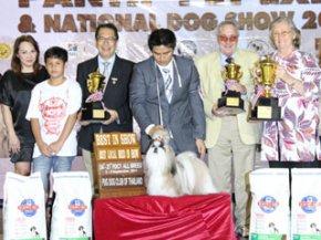 PANTIP PET EXPO & NATIONAL DOG SHOW 2011 (AB4)
