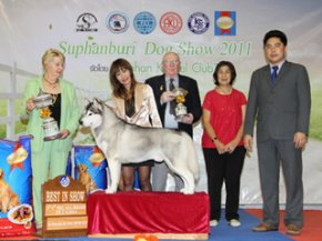 Suphanburi Dog Show 2011(AB4)
