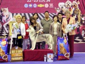 Bangkok Grand Dog Show 2011(AB3)