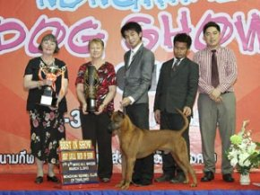 TH.CH.SIAM GRAND PETCH-AMPOL BY D-D-P