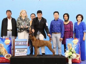 Best Puppy Of The Year 2014