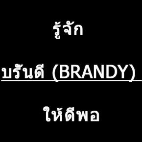 รู้จัก บรั่นดี (BRANDY) ให้ดีพอ