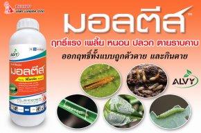 มอลตีส สารฟิโพรนิลป้องกันกำจัดแมลง และปลวก