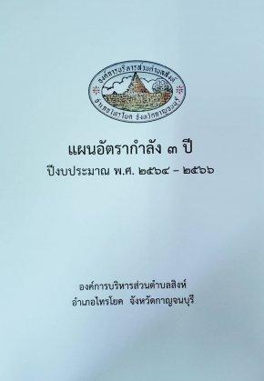 แผนอัตรากำลัง 3 ปี (พ.ศ.2564-2566)