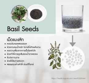 เม็ดแมงลัก (Basil Seed)