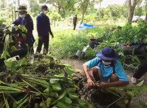 กลุ่มวิสาหกิจชุมชนผู้ผลิตอาหารปลอดภัยและสมุนไพรพื้นบ้าน จ.สุรินทร์