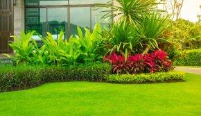 Feng Shui Garden แต่งสวนสวย เสริมพลังโชคลาภ