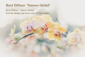 "Reed Diffuser ""siamese Orchid"" Feel the identity and sweet scent of Thai orchid."