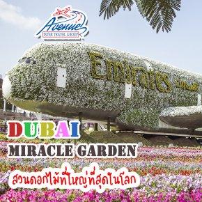 ดูไบ มิราเคิล การ์เด้น สวนดอกไม้ที่ใหญ่ที่สุดในโลก