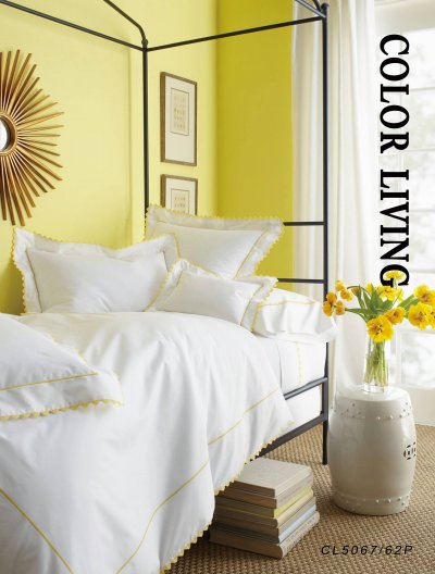 Color Living