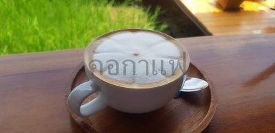 คอกาแฟ