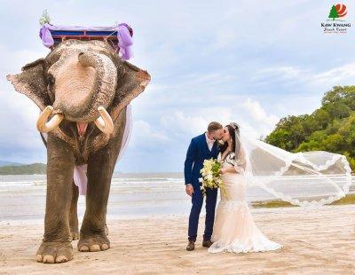 Events & Wedding