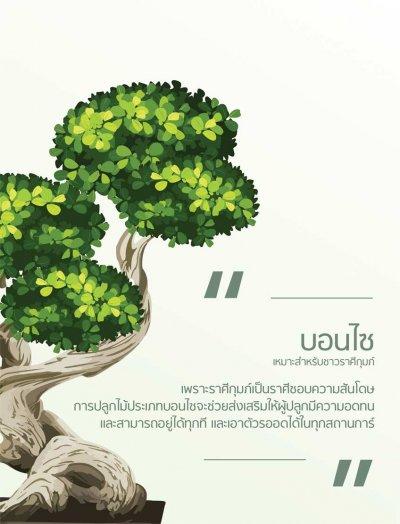 Calendar Sacred tree