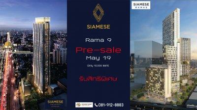 Siamese Rama9