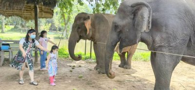 ศูนย์การเรียนรู้ช้าง(พิษณุโลก)