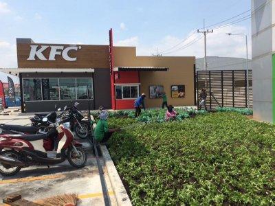 KFC BPฉะเชิงเทรา