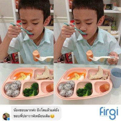 Review ถาดอาหารหลุม Firgi