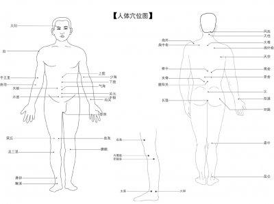 人体经穴图
