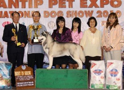 PANTIP PET EXPO & NATIONAL DOG SHOW 2010