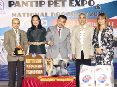 PANTIP PET EXPO & NATIONAL DOG SHOW 2012(AB1)