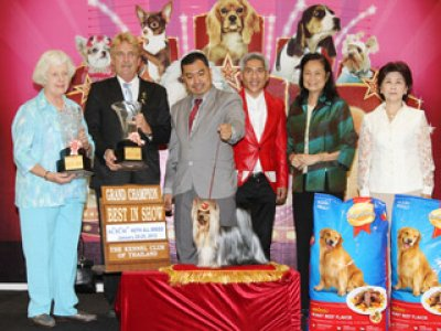 Champion Of Champions Dog Show 2012(AB2)