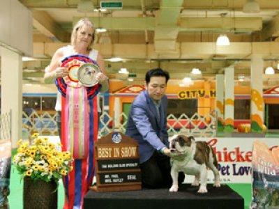 BULLDOG SPECIALTY CHAMPIONSHIP DOG SHOW 2012