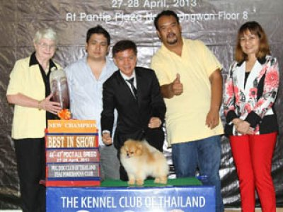 PANTIP PET EXPO & NATIONAL DOG SHOW 2013(AB1)